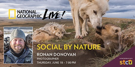 More Info for National Geographic Live: Social By Nature - Ronan Donovan