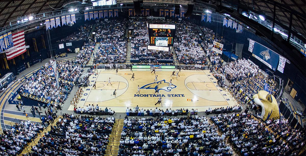 Montana State University Men's Basketball