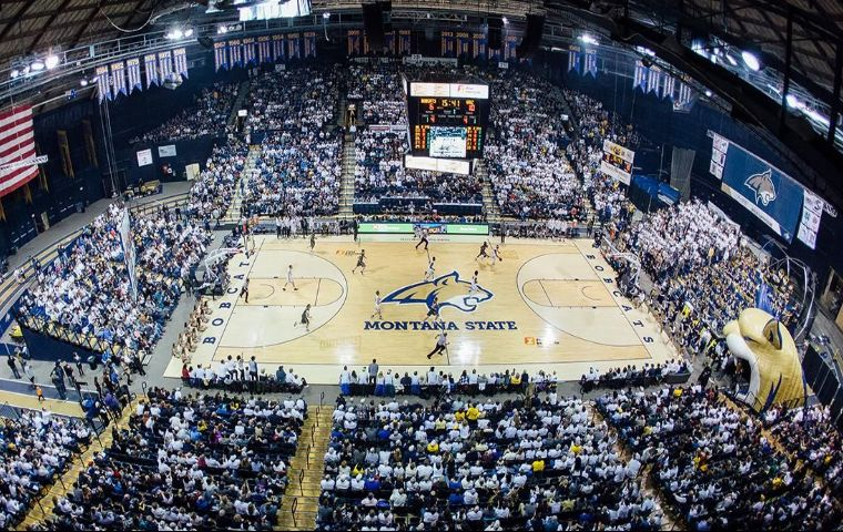 More Info for Montana State University Women's Basketball