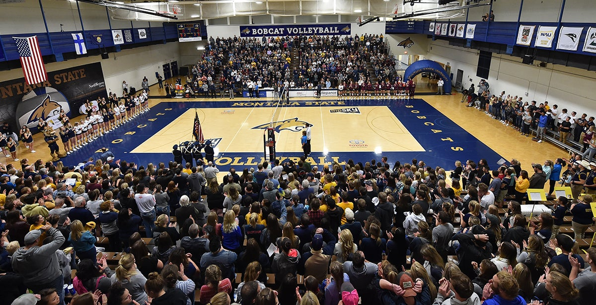 Montana State Bobcats Volleyball