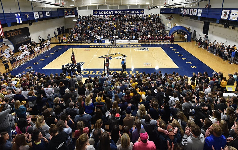 More Info for Montana State Bobcats Volleyball