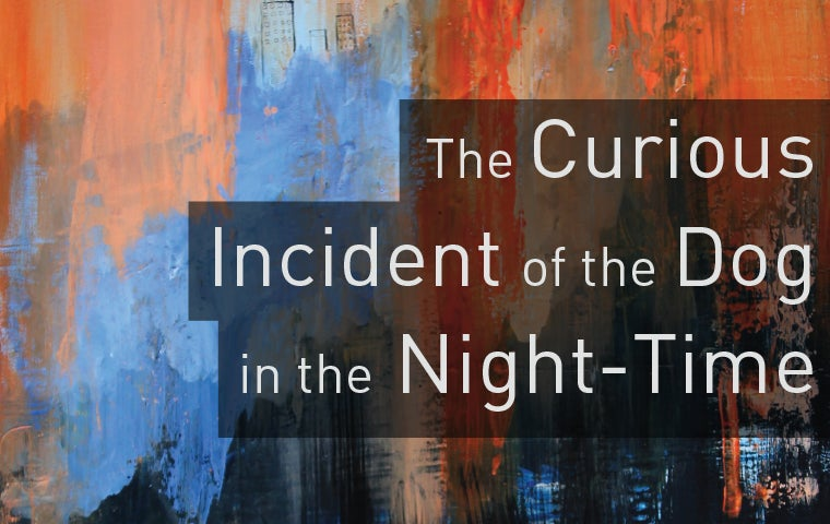 More Info for The Curious Incident of the Dog in the Night-Time