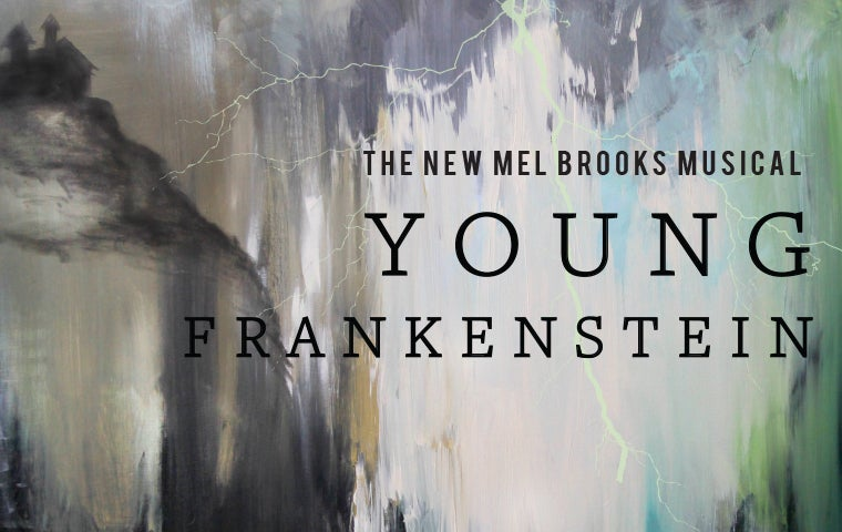 More Info for Young Frankenstein